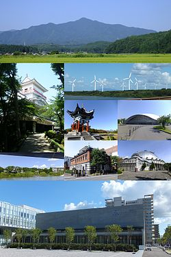 Akita montage.jpg