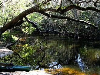 Hillsborough County, Florida - Image: Alafia River near Lithia Springs Park