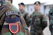 Albanian army badges