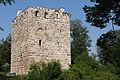 Alberswil-Ruine-Kastelen.jpg