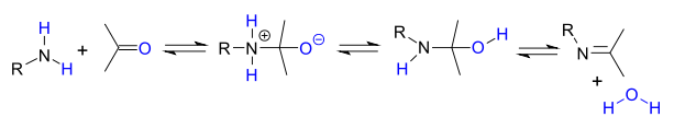 Alkylimino-de-oxo-bisubstitution