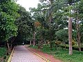 Alley walkway at Kadri Park in Mangalore - 2.jpg