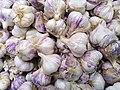 Allium sativum (Amaryllidaceae).jpg