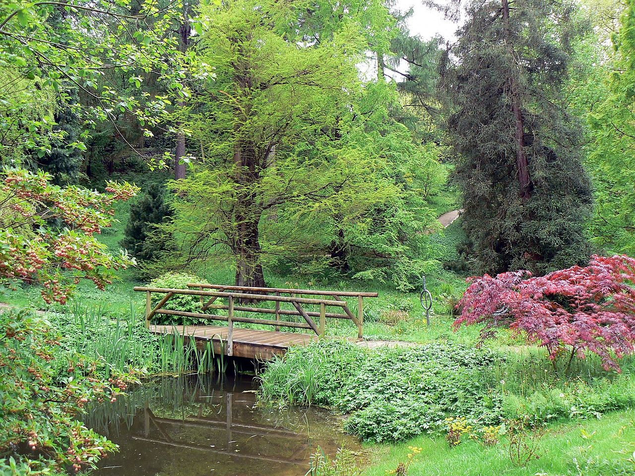 Alter Botanischer Garten Kiel: File:Alter Botanischer Garten Kiel Bruecke.jpg