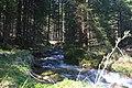 Am Ingeringsee - panoramio.jpg