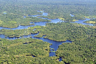 Manaus - Aerial view of the Amazon Rainforest, near Manaus