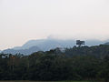 Amazonia cerca de Rurrenabaque Bolivia.jpg