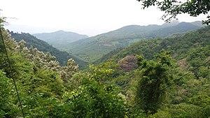 Nedumpara Peak - Image: Ambanad Hills