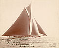 America's Cup, the Independence, 1901.jpg