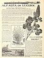 American farmers' manual (1903) (17497371704).jpg