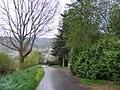 Andel- Moselufer - geo.hlipp.de - 37698.jpg