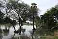 Andiarpalayam LAKE - panoramio (3).jpg