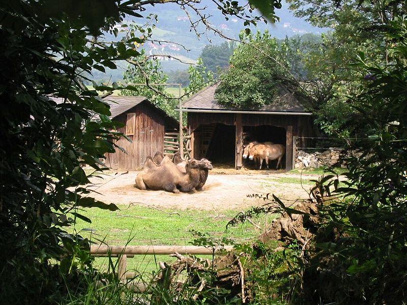 Tier- und Naturpark Schloss Herberstein
