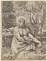 Annibale Carracci, Saint Jerome in the Wilderness, c. 1591, NGA 53479.jpg