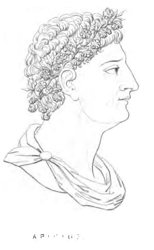 Marcus Gavius Apicius - Imaginary portrait of Apicius from Alexis Soyer's Pantropheon.