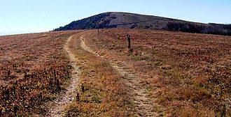 Unicoi County, Tennessee - The Appalachian Trail approaching the summit of Big Bald