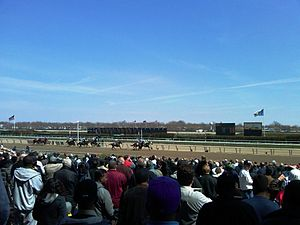 Aqueduct Racetrack - Spectators watching the finish of a race on Aqueduct's Main Track