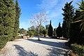 Arboretum de Canet-en-Roussillon le 8 février 2016 - 11.jpg
