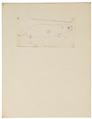 Arvicola xanthognatha - 1700-1880 - Print - Iconographia Zoologica - Special Collections University of Amsterdam - UBA01 IZ20500141.tif