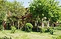 Ascunsa in vegetatie - panoramio.jpg