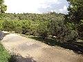Athens 098.jpg