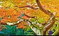 Autumn (16044290969).jpg