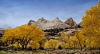 Autumn colors in Capitol Reef National Park.jpg