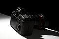 Back of Canon EOS 5D Mark II.jpg