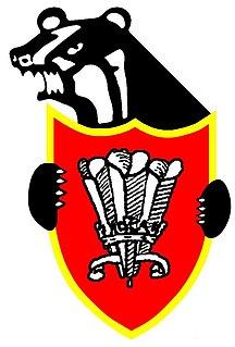 Pontyclun RFC Welsh rugby union team