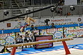 Balance 3 2015 Pan Am Games.jpg
