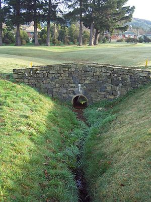 Kaikorai Stream - A footbridge on the No 2 fairway at Balmacewen Golf Course: the stream's source