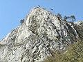 Banat, St.Helena - panoramio (48).jpg