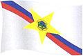 Bandeira de PF, Amazonas.JPG