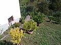 Barga, Province of Lucca, Italy - panoramio - jim walton (30).jpg