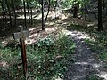 Base of Loess Trail to Talbot Road at the Brook - panoramio.jpg