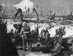 Battle of peleliu wikipedia