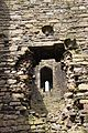 Beaumaris Castle 2015 126.jpg