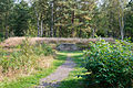 Bergen-Belsen concentration camp memorial - mass grave No 1 - 03.jpg