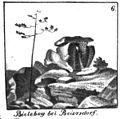 Bielebohaltar gezeichnet von Karl Benjamin Preusker 1844.jpg