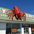 Big Rock Lobster.jpg