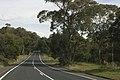 Bilpin NSW 2758, Australia - panoramio (30).jpg