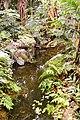 Biome tropical BM03.jpg