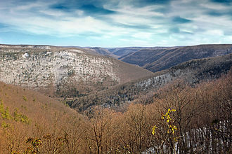 Black Forest Trail - View of the Naval Run and Pine Creek Gorges from the Black Forest Trail