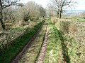 Blackdown Hills , Country Track - geograph.org.uk - 1243135.jpg