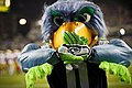 Blitz Seattle Seahawks Mascot.jpg