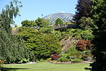 Bloedel Floral Conservatory, Queen Elizabeth Park - Vancouver, Canada - DSC07618.JPG