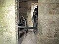 Bodmin Jail, Bodmin (461322) (13486858395).jpg