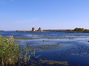 Boryspilski Islands Reserve-10-2009.JPG
