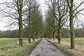 Boschlaan Heeze P1130527.jpg