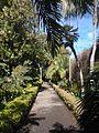 Botanical Garden, Puerto de la Cruz 04.jpg